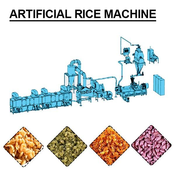 New Type Stainless Steel Artificial Rice Extruder Machine With No Waste #1 image