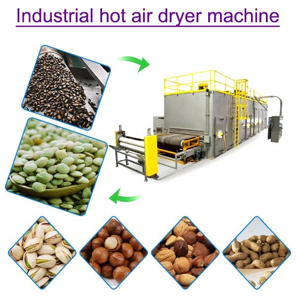 Iso Ce Compliant Small-scale Desiccant Dryer For Fruits #1 image
