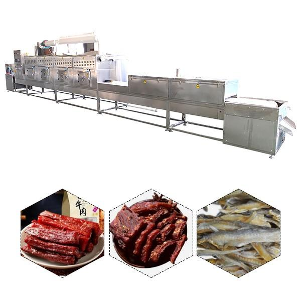 Ce Compliant Factory Supply Vegetable Dehydrator With Energy Saving #1 image